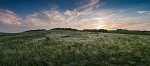 Brandushkin Yar, kovyla, panorama.jpg