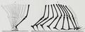 Braus 1921 289.png
