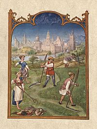 Fief depiction in a book of hours