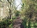 Bridleway between the woods - geograph.org.uk - 1596997.jpg