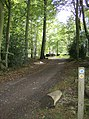 Bridleway through Nott Wood - geograph.org.uk - 595727.jpg