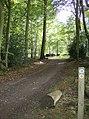 Bridleway through Nott Wood - geograph.org.uk - 595727.jpg