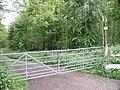 Brockhill Wood - geograph.org.uk - 172383.jpg