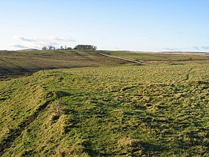 Carrawburgh - Southern rampart of Brocolitia