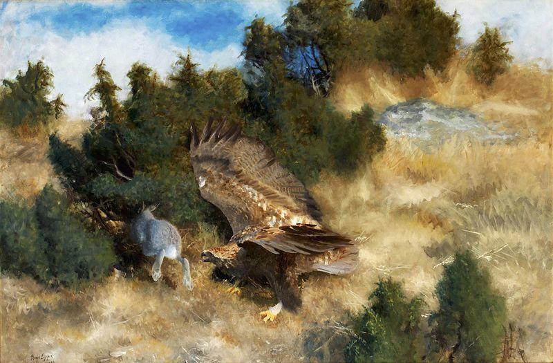 File:Bruno Liljefors - Örn jagande hare.jpg