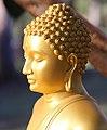 Buddha statue under Bodhi Tree, Dhammagiri.jpg