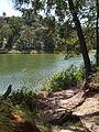 Budj Bim ‐ Mt Eccles National Park, Victoria, Australia 31.jpg