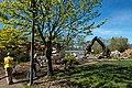 Building A demolition Chilliwack North-15 (25902128880).jpg