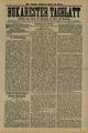 Bukarester Tagblatt 1889-05-02, nr. 098.pdf