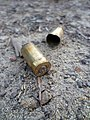 Bullet casings in the woods.jpg