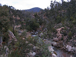 Bundara River upstream near Anglers Rest, Vic, jjron, 6.06.2009.jpg