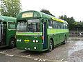 Bus IMG 0327 (16349833336).jpg