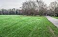 Bushy Park, Dublin -146422 (46427099472).jpg