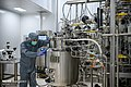COVIran Barekat vaccine production 07.jpg