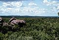 CSIRO ScienceImage 351 Savannas in the Tropics of Australia.jpg