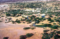 CSIRO ScienceImage 4416 Aerial view of an oasis on the edge of the desert in Kenya Africa 1981.jpg