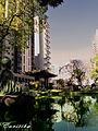 CURITIBA - BRASIL - BY AUGUSTO JANISCKI JUNIOR - Flickr - AUGUSTO JANISKI JUNIOR.jpg