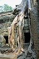 Cambodia-2551 (3608428123).jpg