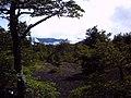 Camino al refugio del volcán Llaima en Parque Nacional Conguillio (febrero 2011) - panoramio.jpg