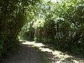 Camminando per la riserva Casalbeltrame 4.jpg