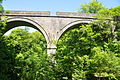 Cann Viaduct (4275).jpg