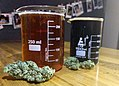 Cannabis and Beer Brewery Tour.jpg