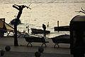 Cantabria. Puerto Chico. Fisherman. Santander. Spain (3379991224).jpg