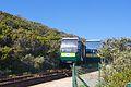 Cape Point 2014 31.jpg