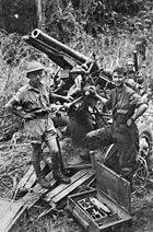 Captured Japanese Type 88 75mm near Buna-Gona