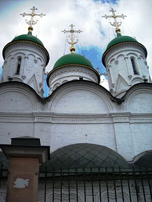 Cathedral of the Presentation of the Vladimir Icon of the Mother of God, 2010 01.jpg, автор: Elisa.rolle