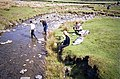 Cautley Holme Beck - geograph.org.uk - 1431564.jpg