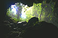 Cave in Belize.jpg