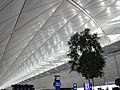 Ceiling of Hong Kong International Airport 香港國際機場的屋頂切線 - panoramio.jpg
