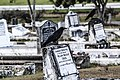 Cemetery crows.jpg