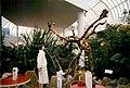 Center Parcs - Bois Francs - 1988-Septembre-P7.jpg