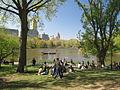 Central Park NYC - Lake.jpg