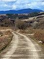 Cesta nikam - panoramio.jpg
