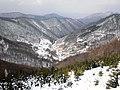 Cestou zo Skaliek - panoramio.jpg