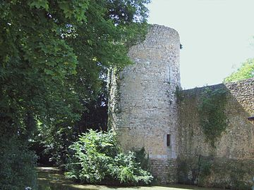 Photo d'une partie des Remparts de Chatillon-Coligny
