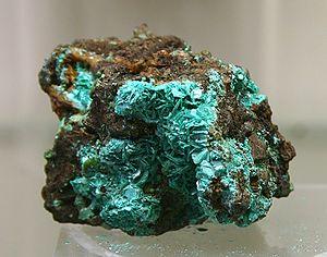 Chalkophyllit - Mineralogisches Museum Bonn (7295).jpg