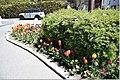 Chamonix 340DSC 0262 (48574811132).jpg