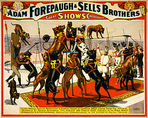 Circus - Sells Brothers Circus with Great Danes