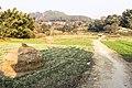 Changunarayan photowalk-WLV-3768.jpg