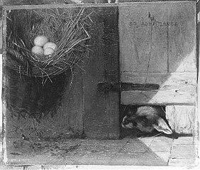 Het bedreigde nest