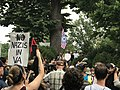 "Charlottesville ""Unite the Right"" Rally (35780263594).jpg"