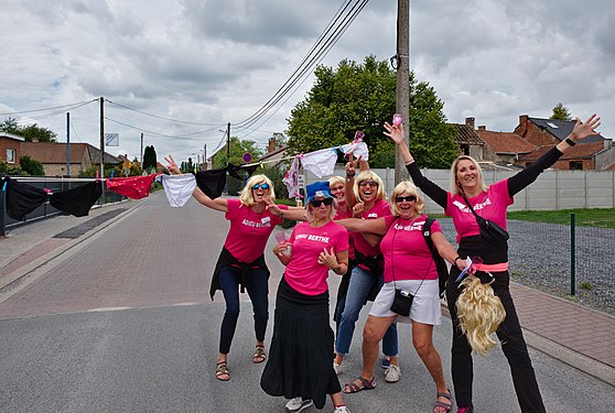 Cheerful roadblock on Chemin du Prince in Erbisœul, Belgium (DSCF8153).jpg