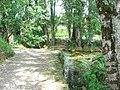 Chemin (Arbois) (1).jpg