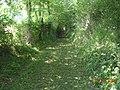 Chemin du Buquet - panoramio (1).jpg