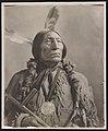 Chief Wolf Robe LCCN2011647022.jpg