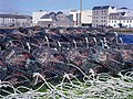 Claddagh Lobster Pots (69082005).jpeg
